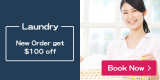 Laundry/Carpet Cleaning